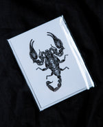 Emperor Scorpion Greeting Card - Open Sea Designs