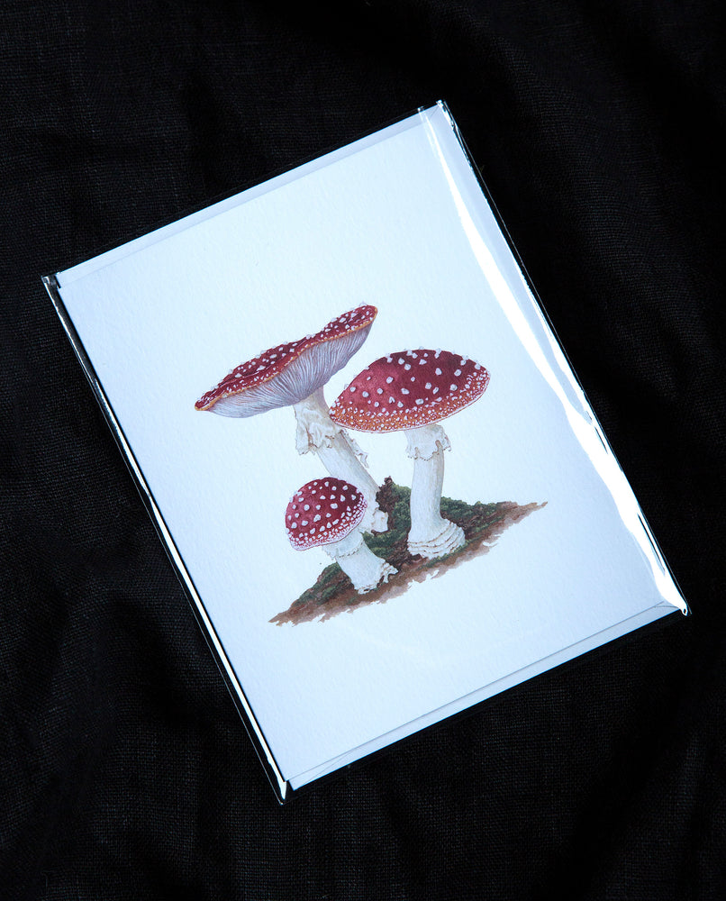 Amanita Muscaria Greeting Card - Open Sea Designs