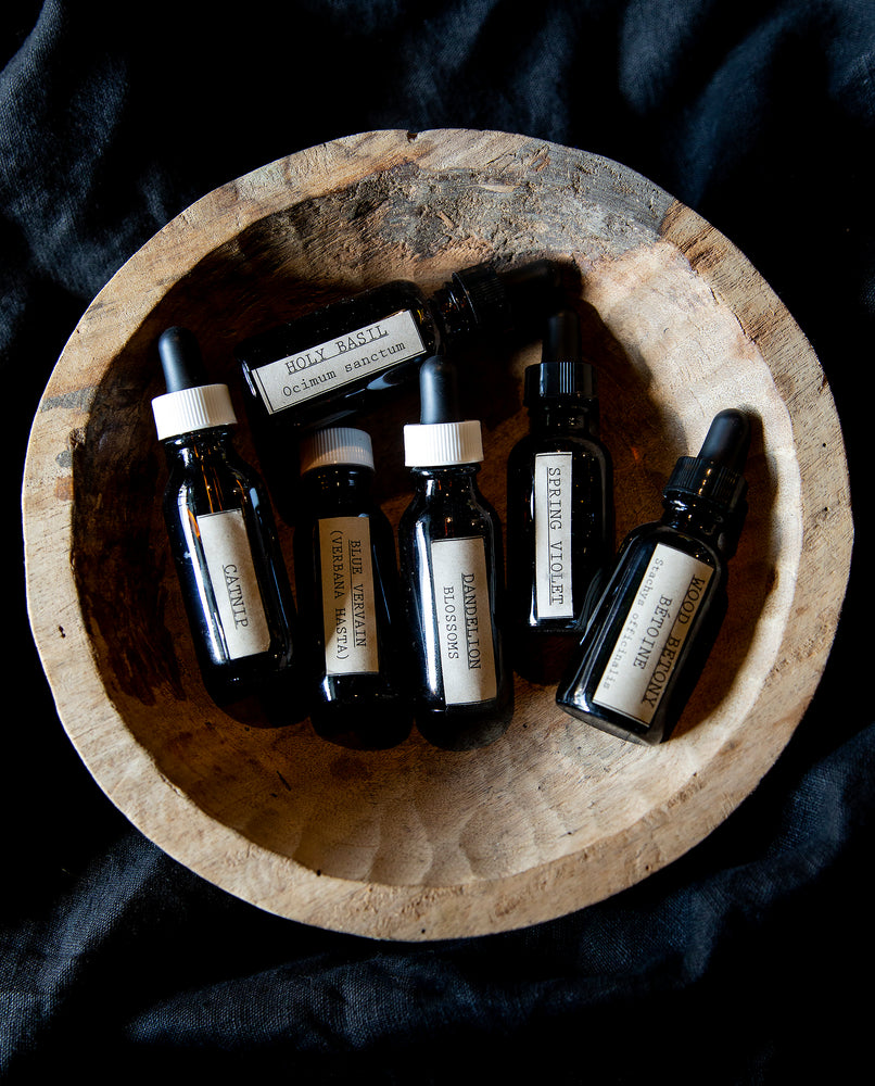 Single Origin Herbal Tinctures- Blueberryjams