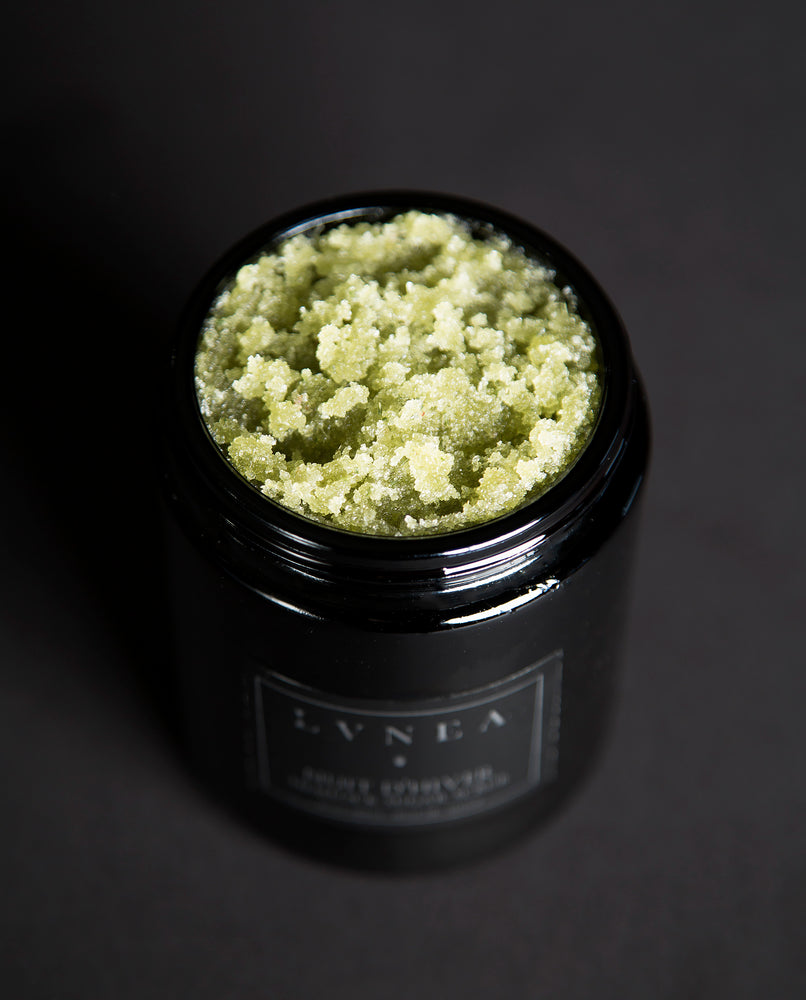 LVNEA - Hemlock Sugar Scrub - Nuit d'Hiver - Seasonal Limited Edition - Sale