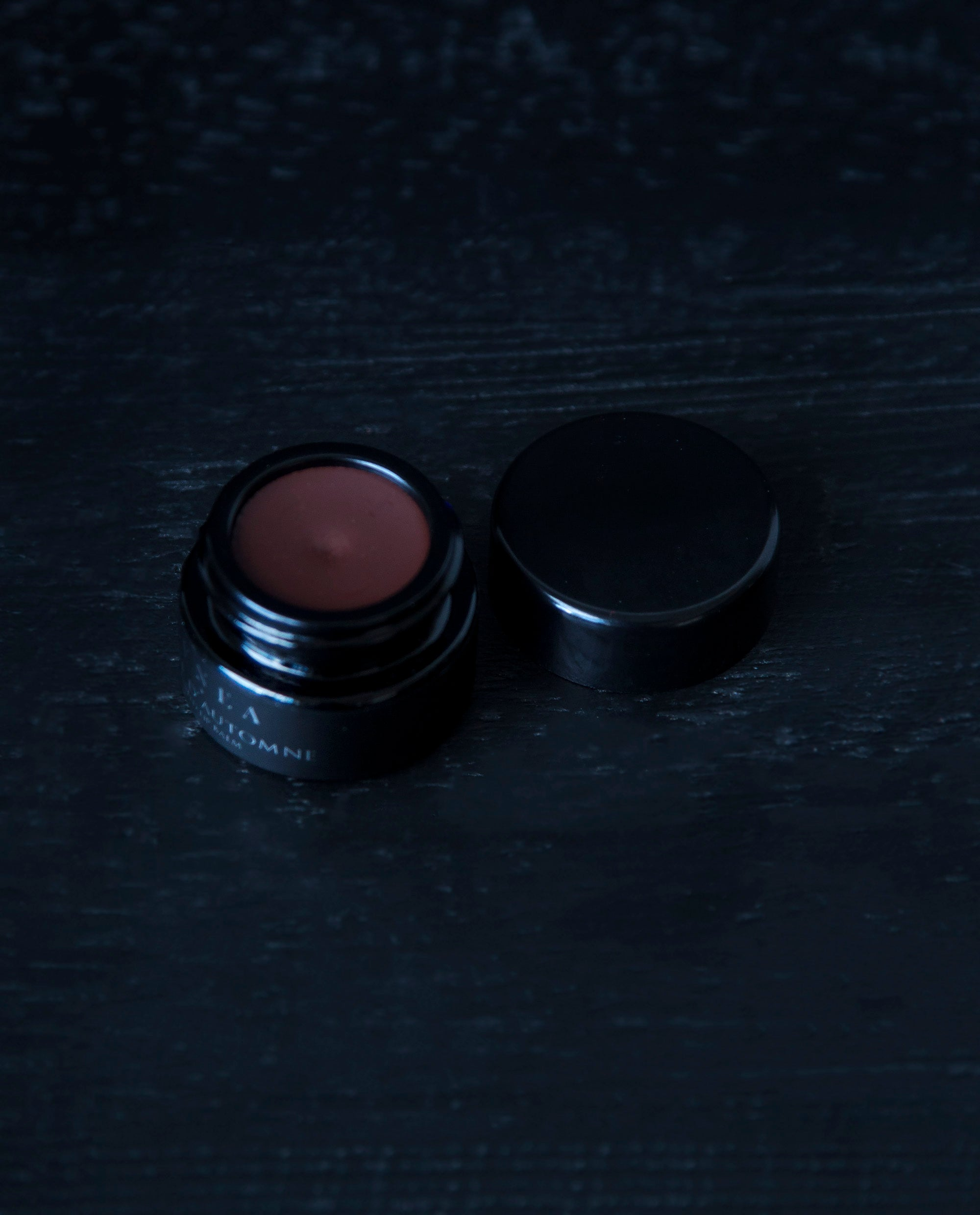 Ombre d'Automne - tinted lip balm