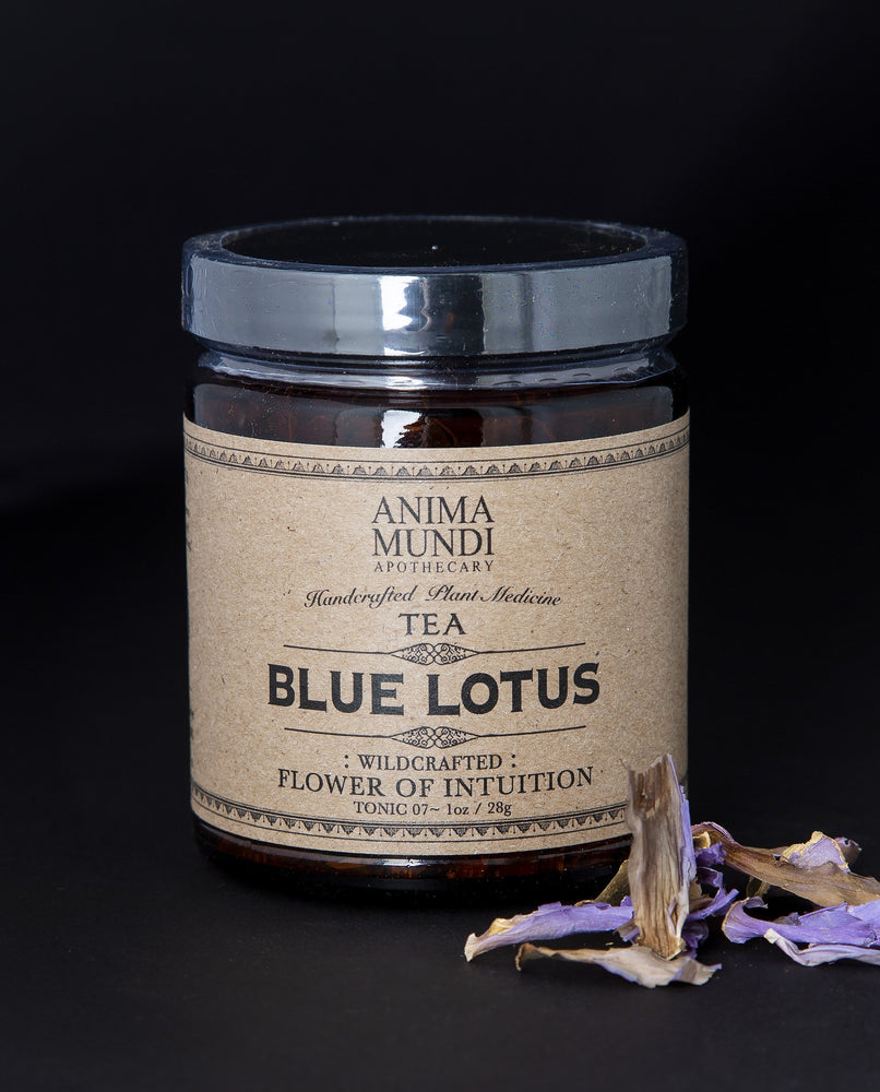 Blue Lotus Flower by Anima Mundi Apothecary