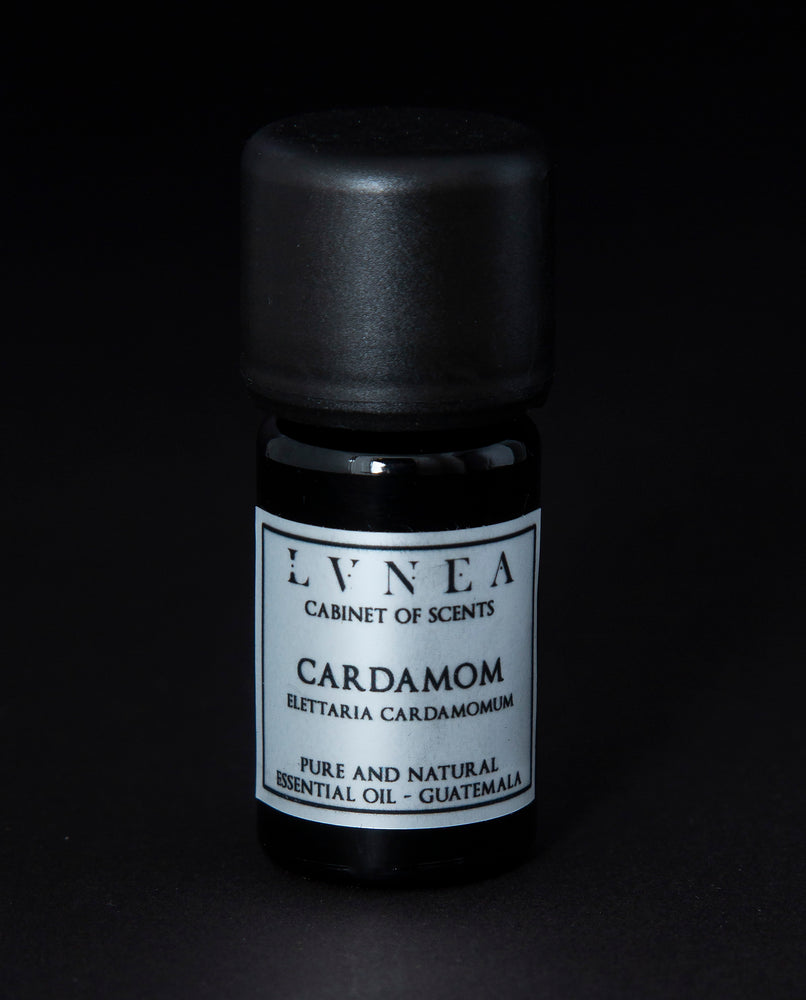 Cardamom - Pure Essential Oil