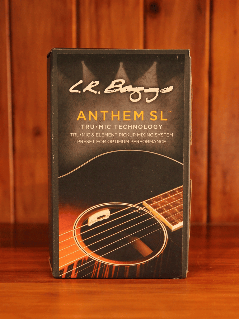LR Baggs Anthem SL Acoustic Guitar Pickup - The Rock Inn