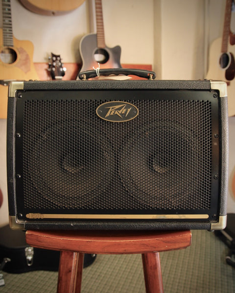 "Peavey Ecoustic E208 30W 2x8"" Acoustic Amp Pre Owned"
