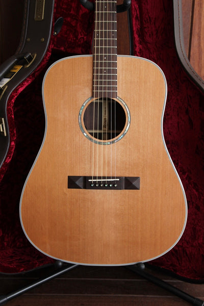 Tasman TA200E Dreadnought Acoustic-Electric Guitar with Case