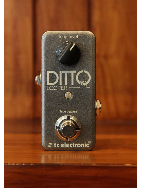 TC Electronic Ditto - Looper Pedal - The Rock Inn