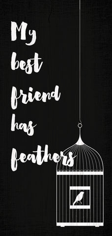 "Pet Sign Wood My Best Friend Has Feathers 5""x10"""