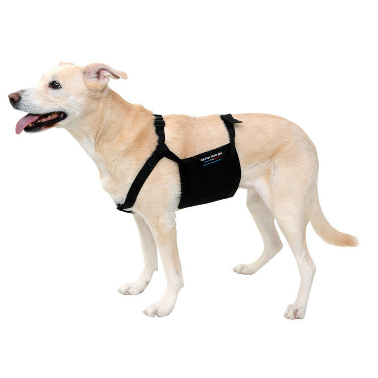 Glacier Tek Chilly Pup Cool Vest, Black, Includes GlacierPack Set