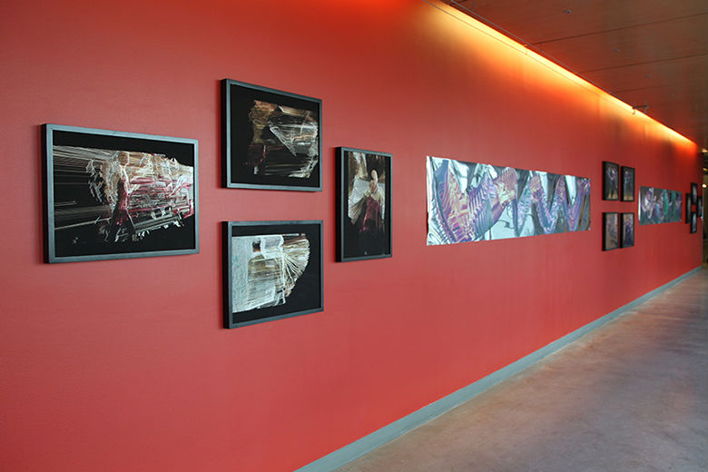 Suspended Motion Series I-III prints installed at UCSC, May 2014