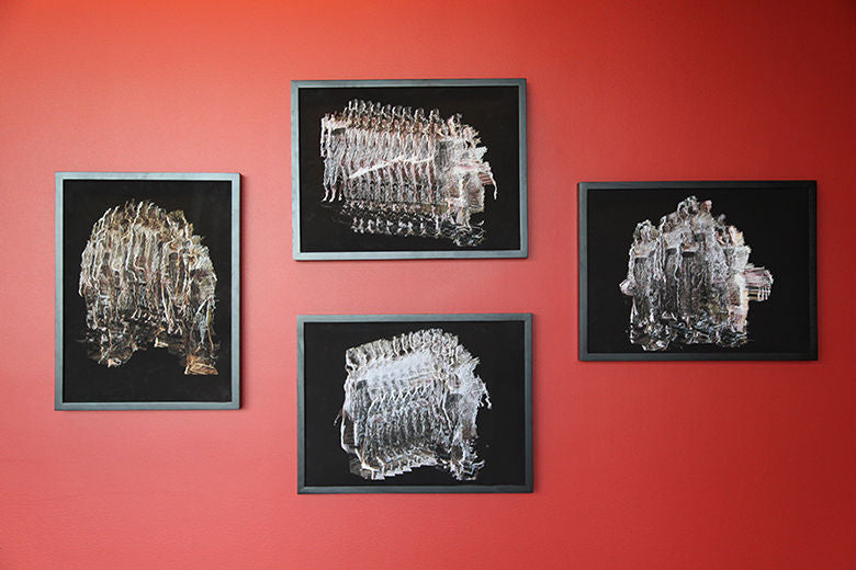 Suspended Motion Series III: I-IV prints installed at UCSC, May 2014