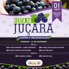 Açái do sul (Juçara Seeds)
