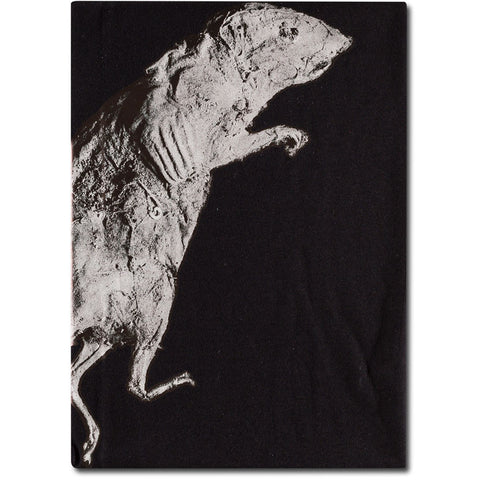 Trent Parke 'Rat, Port Adelaide' from 'The Black Rose' t-shirt