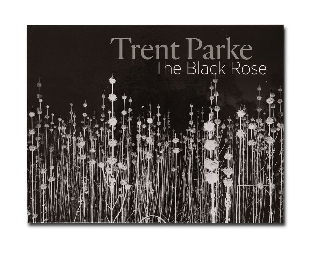 Trent parke the black rose greeting cards black and white hugo michell gallery