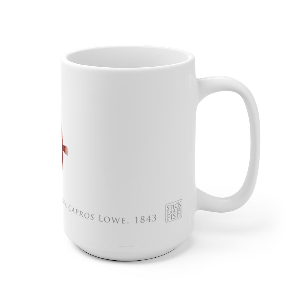 Deepbody Boarfish Mug - Stick Figure Fish Illustration