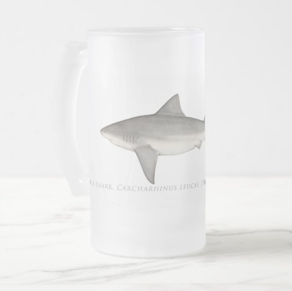 Bull Shark - Frosted Glass Stein - Stick Figure Fish Illustration
