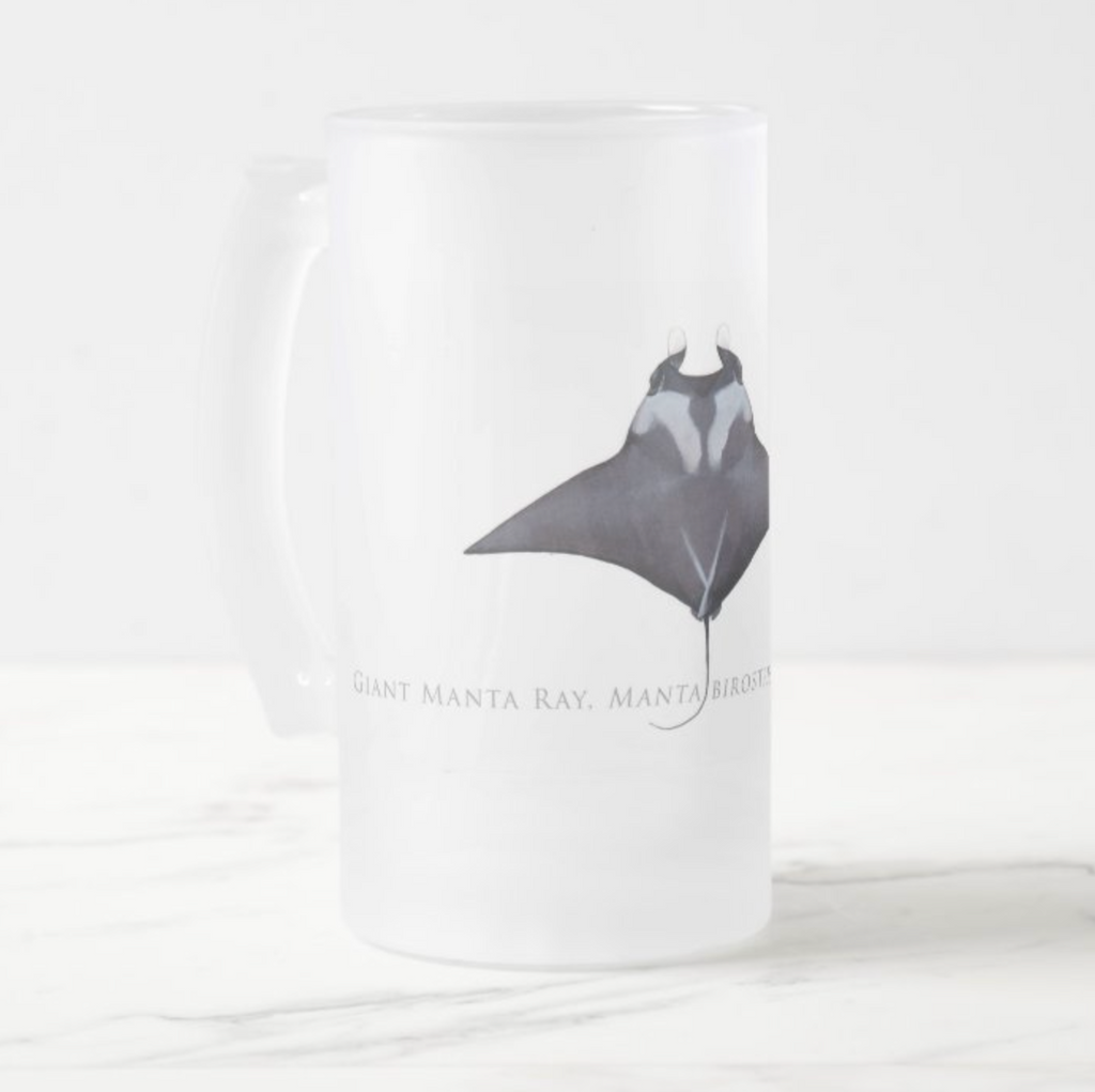 Giant Manta Ray - Frosted Glass Stein - Stick Figure Fish Illustration