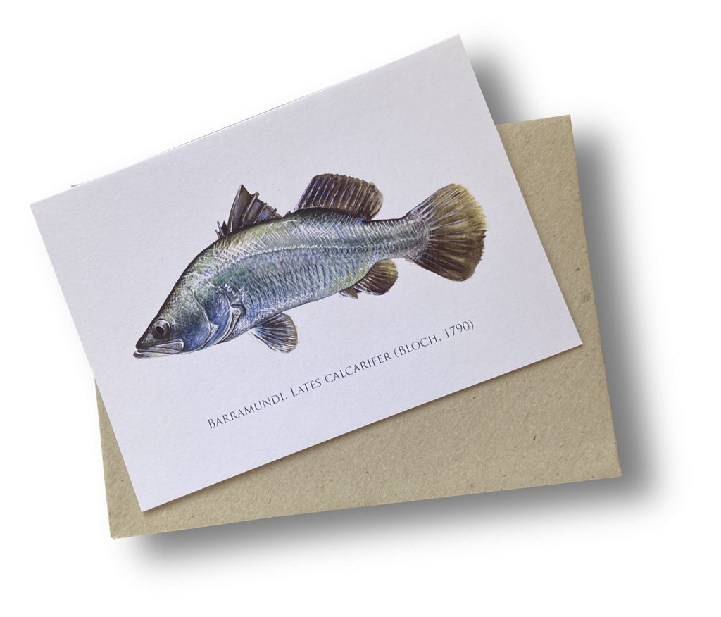 Barramundi Card - Stick Figure Fish Illustration