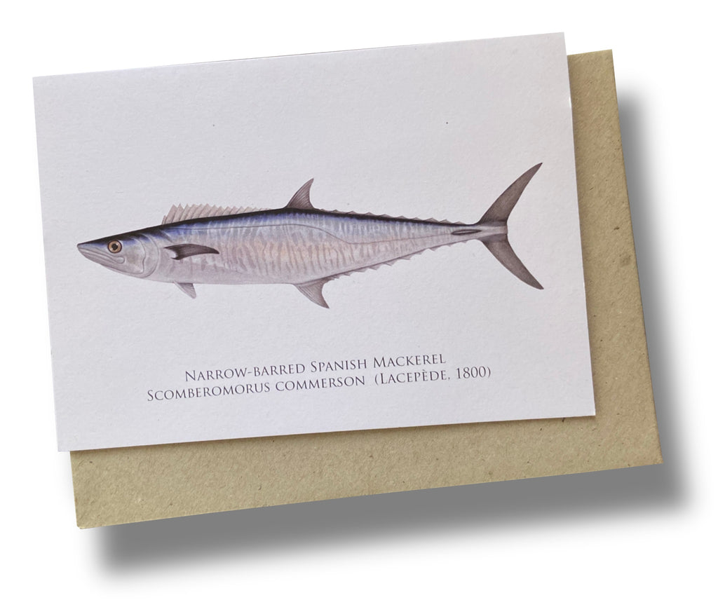 Spanish Mackerel Card - Stick Figure Fish Illustration