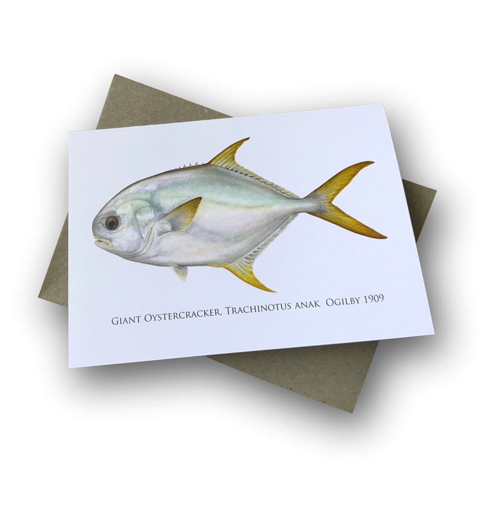 Giant Oystercracker Card - Stick Figure Fish Illustration
