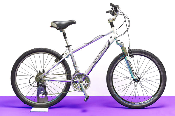 Gary Fisher Solstice Hybrid Bike (Small)