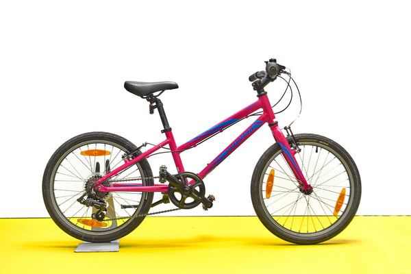 Specialized Hotrock Kids Bike (20in Wheels)