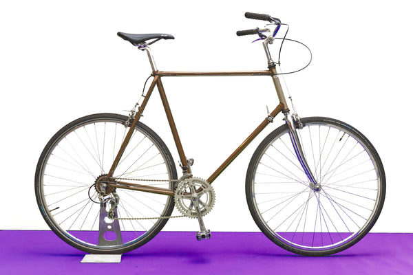 Raleigh Reynolds 531 Vintage Town Bike (Extra Extra Large)