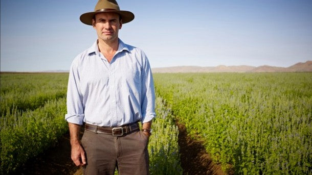 Tight-chia-supply-Not-us-says-Australia-s-Chia-Co.-as-it-continues-global-expansion_strict_xxl