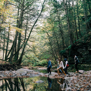SPRING 2020 ADVENTURE - THE CATSKILLS FORAGE & FEAST EXPERIENCE