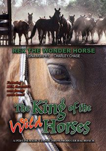 The King Of The Wild Horses (DVD)