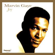 Marvin Gaye - Joy (CD)
