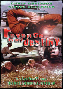 Revenge Is My Destony (DVD)