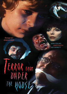 Terror From Under The House (DVD)