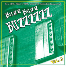 Buzz Buzz Buzzzzz Vol. 2 (CD)
