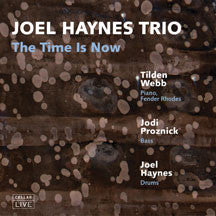 Joel Haynes Trio - The Time Is Now (CD)