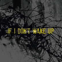 Life Cried - If I Don't Wake Up (CD)