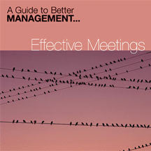 Effective Meetings (CD)