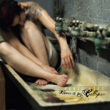 Panic Lift - Witness To Our Collapse (CD)