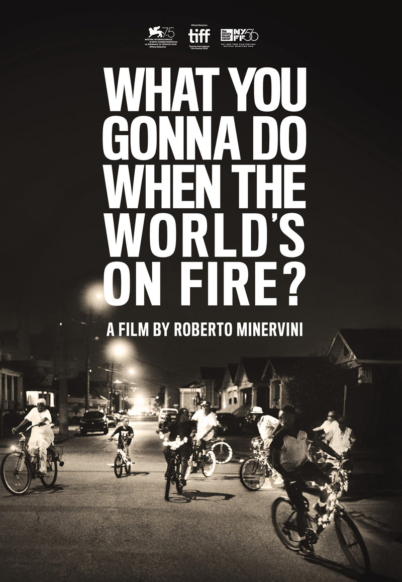 What You Gonna Do When the World's On Fire? (DVD)