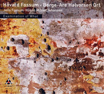 Fossum, Havard - Examination Of What (CD)