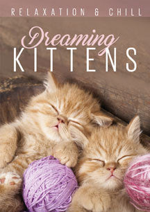 Relax: Dreaming Kittens (DVD)