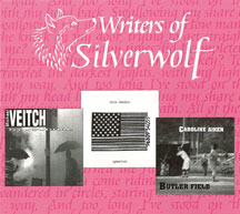 Writers Of Silverwolf (CD)