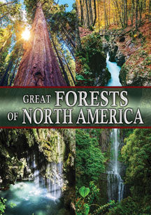 Great Forests Of North America (DVD)