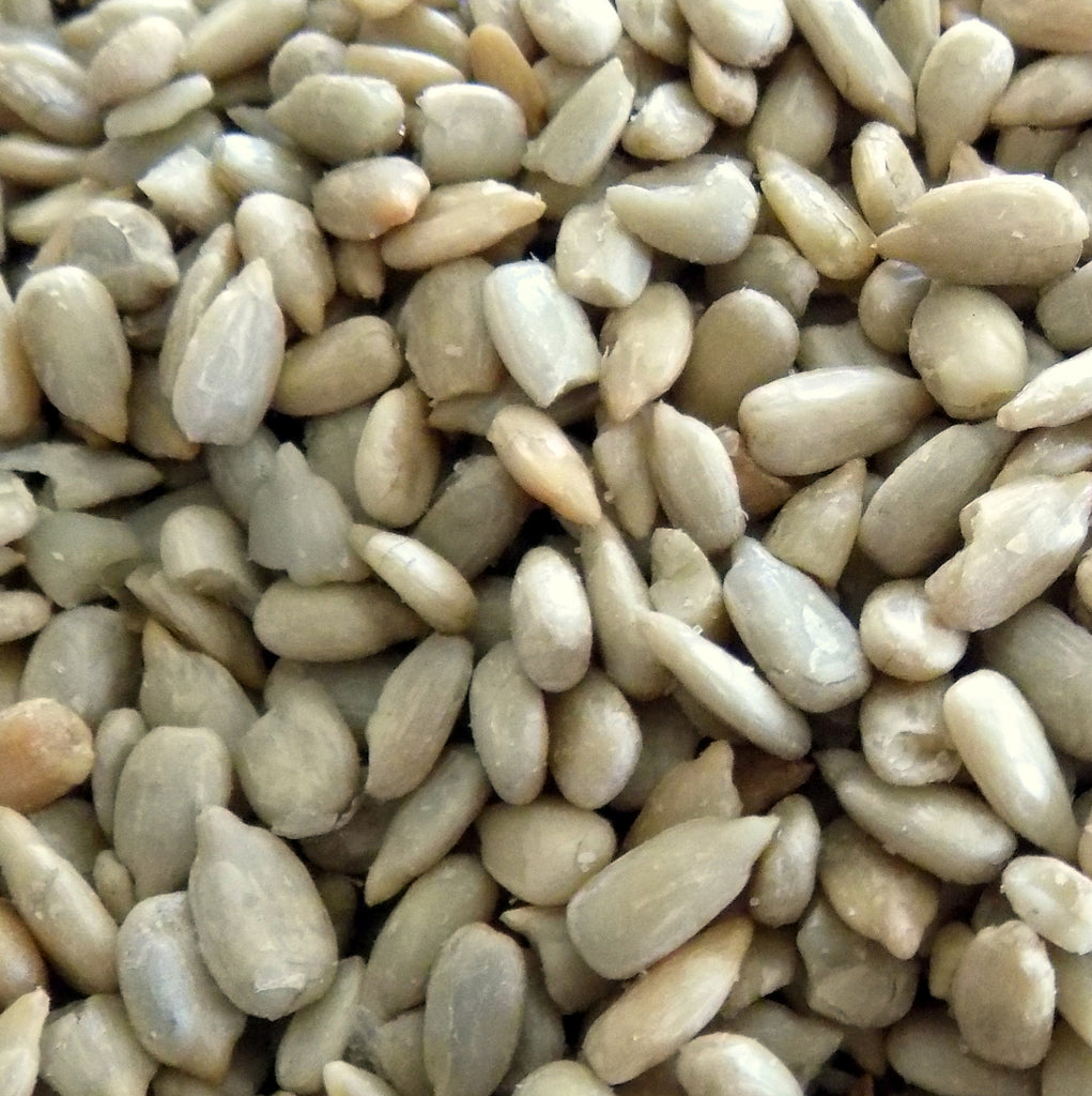 Sunflower Seeds, Roasted and Salted (16 oz)