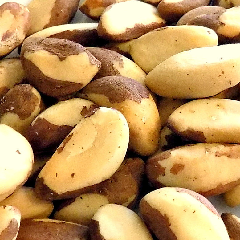 Brazil Nuts, Raw (16 oz)