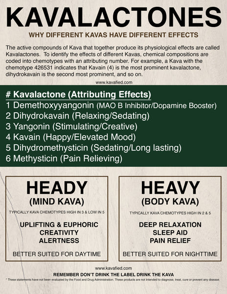 Why Different Kavas Have Different Effects - Kavalactones