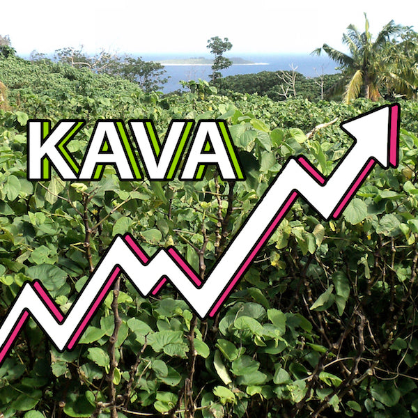 Are we on the dawn of the biggest Kava boom in industry history?