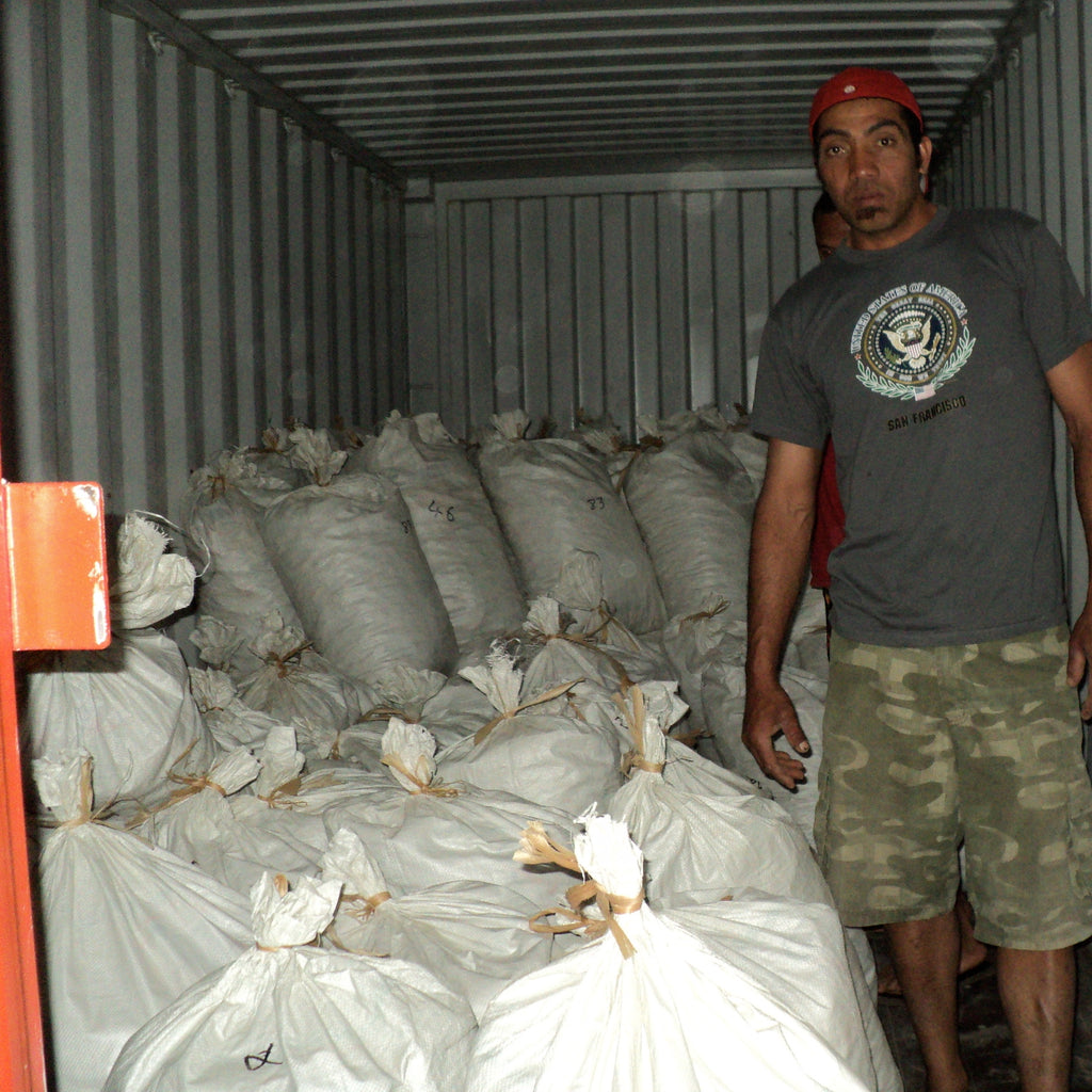 Shipping Container of Dried Kava Root
