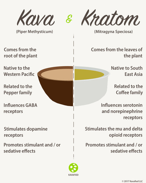 Kava and Kratom