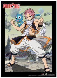 Fairy tail wall scroll Natsu and Happy tall 81261